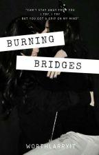 Burning Bridges (camren) by worthlarryit