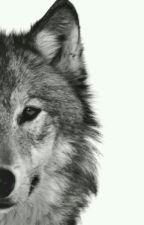 Ludzie Wilki by marywiki