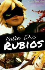 Entre Dos Rubios (Chat Noir x Tu x Len Kagamine) #TacoAwards2017 by XxLenka-SamaxX