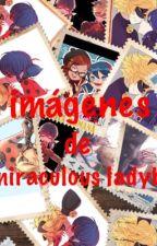 Imágenes, cómics, memes, vídeos  de miraculous ladybug  by karenavaloslol