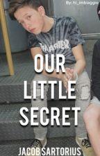 Our Little Secret || Jacob Sartorius  by hi_imbiaggio