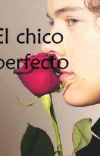 El Chico Perfecto (Harry y tu) by LaPalomaDeValencia