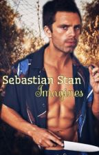 Sebastian Stan Imagines! by sebuckystan