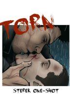 TORN [Sterek OneShot*] by AzulGarciaVargas