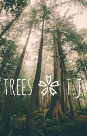 trees ❀ t.j. by gracieellynn