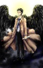 Wings- A Destiel AU by graymk9652