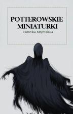 Potterowskie miniaturki by DominikaStryminska