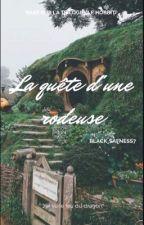 La quête d'une rôdeuse.  by black_sadness7