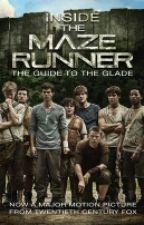 The Maze Runner  by julia10956