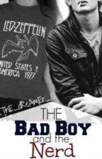 Uma Nerd E Um Bad Boy by Pandinha101