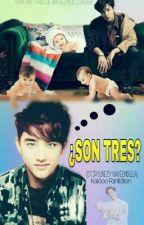 ¿Son Tres?  (KaiSoo) M-preg by MayelinBella1998