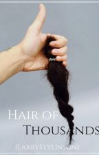 Hair of Thousands - LS by Larrymilis