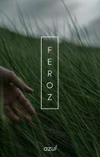 Feroz; ns by -astronomic