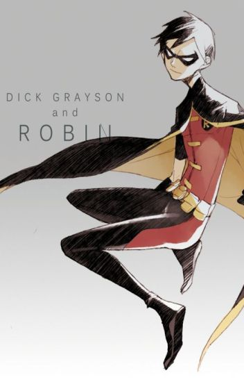 (Young Justice Robin x Reader)