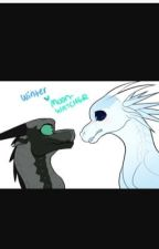 Truth or Dare, Dragon drawings and my OC's and Wings of Fire ships! by SoWhatSueMe