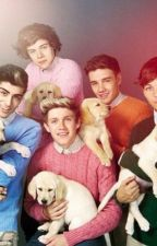 Abused. (A One Direction Fanfiction) by EmittyLoves1D