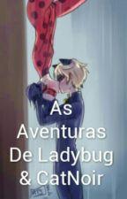 As Aventuras De Ladybug & CatNoir by amiuty