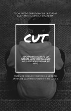 Cut by max022