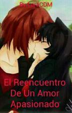 El Reencuentro De Un Amor Apasionado by LaraCDM