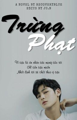 [LONGFIC][SEVENTEEN][MEANIE] TRỪNG PHẠT