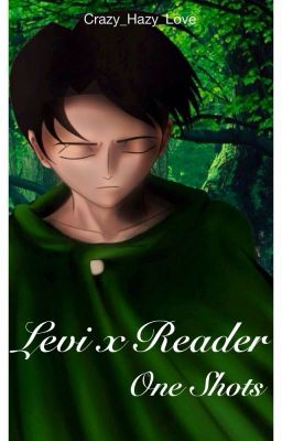 Levi x Reader [One Shots] - Morning Bliss |Levi x Reader| - Wattpad