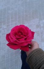 Un Amor Perfecto  by Naziharifino