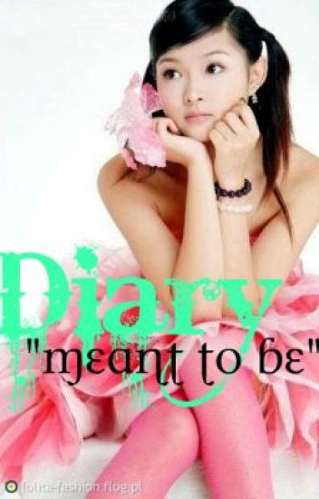 """DIARY """"Meant to Be""""  (On-Hold)"""