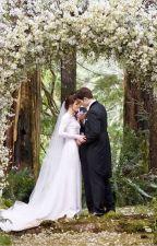 Wedding Day by rkstories