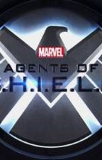 Agents of S.H.I.E.L.D. x Reader by heyimbigmack