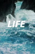 LIFE // by alltimefoscar