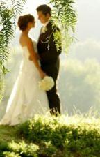 wedding destiny by diana_750
