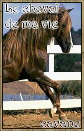 Le cheval de ma vie...(En re-lecture) by cavane