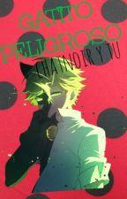 Gatito Peligroso [ChatNoir & tu] by Princesanoir
