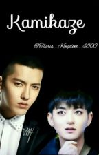 Kamikaze by Taoris_Kingdom_6800