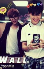 WALL - YOONMIN by Alien_Min