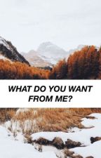 what do you want from me? : muke by minimalistics