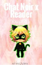 Chat Noir x Reader - You and I by xmegzyiex