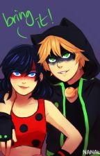 Miraculous Ladybug & Chat Noir by emilygreece