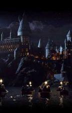 Eu em hogwarts  by Ilovenetflixseries