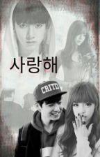 사랑해 {Eu te amo} •Jungkook• by protectminki