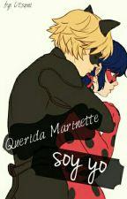 Querida Marinette, soy yo by utsuni