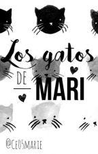 Los gatos de Mari by Ce05marie
