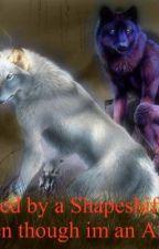 Saved by a Shapeshifter, eventhough I'm an Alpha  (werewolf,boyxboy)BEING EDITED by Lil_Legs_Jojo