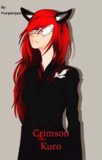 Crimson Kuro//  A RWBY Fanfiction// Volume Two// Slow Updates by Zero_Cat190
