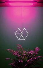 EXO COUPLE TIMEE  (benim katkılarımla )-3 by chan_baekii
