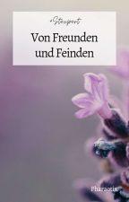 Von Freunden und Feinden (#Stexpert) by Pharaotix