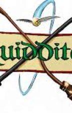 Quidditch by luckyhappyfriend