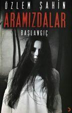 ARAMIZDALAR   (RAFLARDA) by Guneshtengelen
