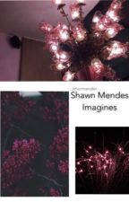 Shawn Mendes Imagines  by amormendes