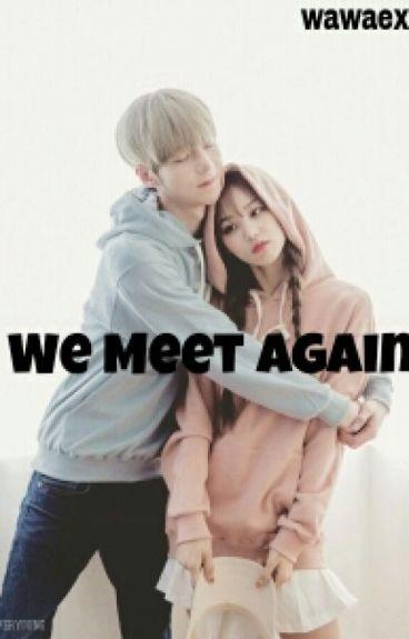 We Meet Again (Wonwoo SVT Fanfic)